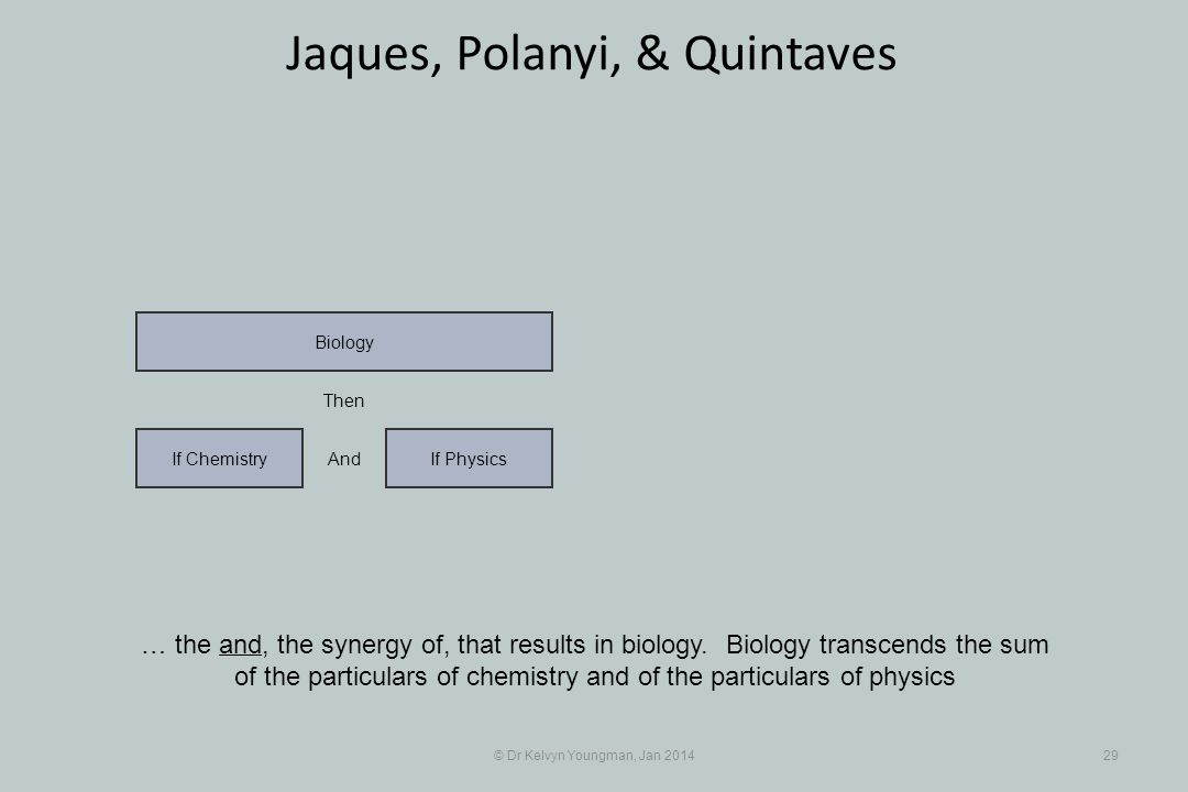 © Dr Kelvyn Youngman, Jan 201429 Jaques, Polanyi, & Quintaves … the and, the synergy of, that results in biology.