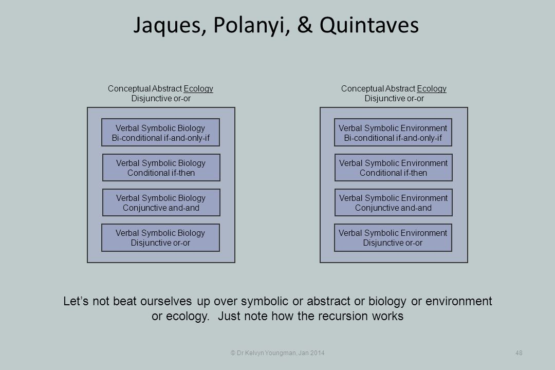 © Dr Kelvyn Youngman, Jan 201448 Jaques, Polanyi, & Quintaves Lets not beat ourselves up over symbolic or abstract or biology or environment or ecology.