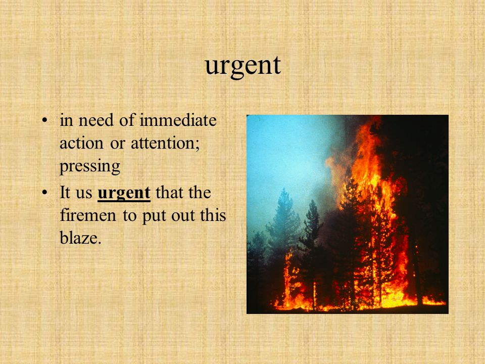 urgent in need of immediate action or attention; pressing It us urgent that the firemen to put out this blaze.