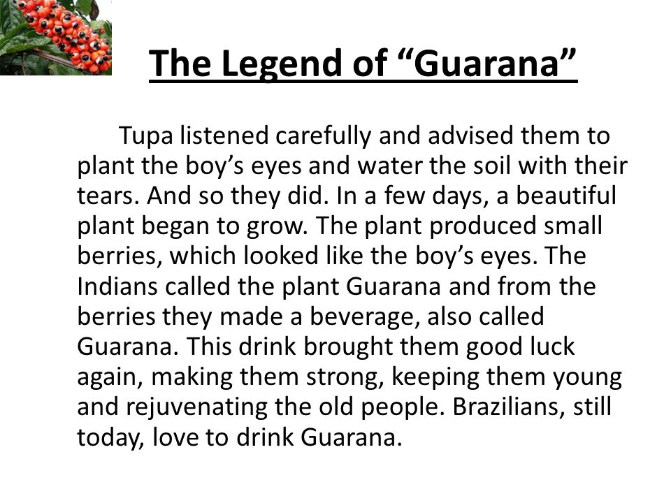 The Legend of Guarana Tupa listened carefully and advised them to plant the boys eyes and water the soil with their tears.