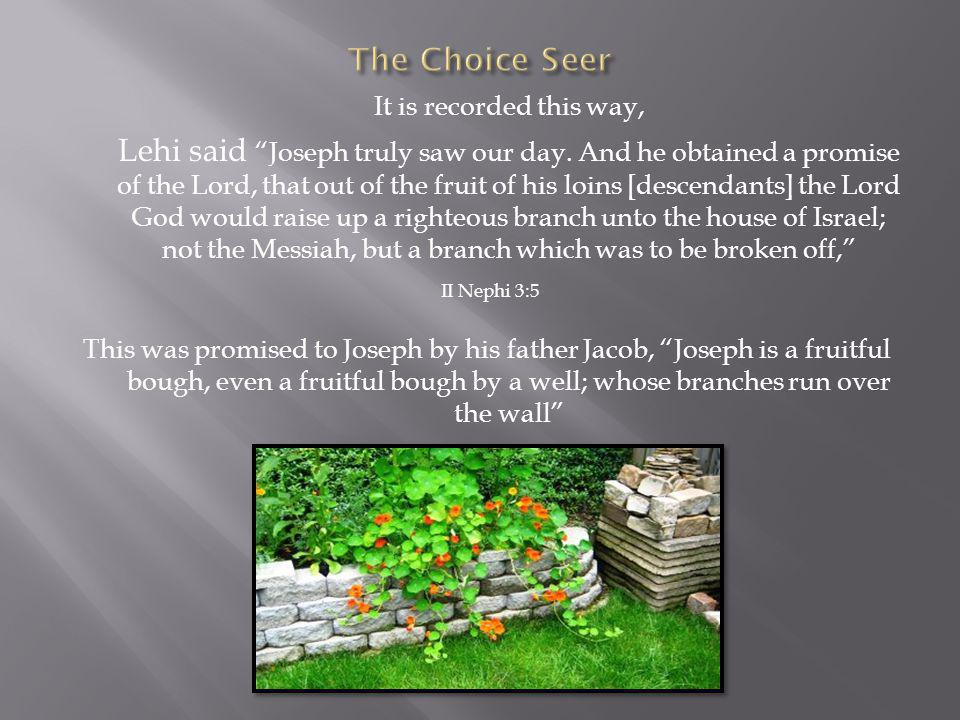 It is recorded this way, Lehi said Joseph truly saw our day. And he obtained a promise of the Lord, that out of the fruit of his loins [descendants] t