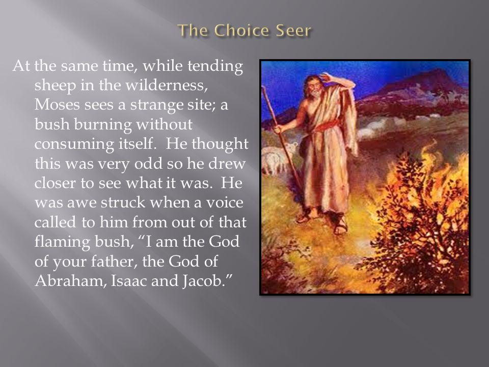At the same time, while tending sheep in the wilderness, Moses sees a strange site; a bush burning without consuming itself.