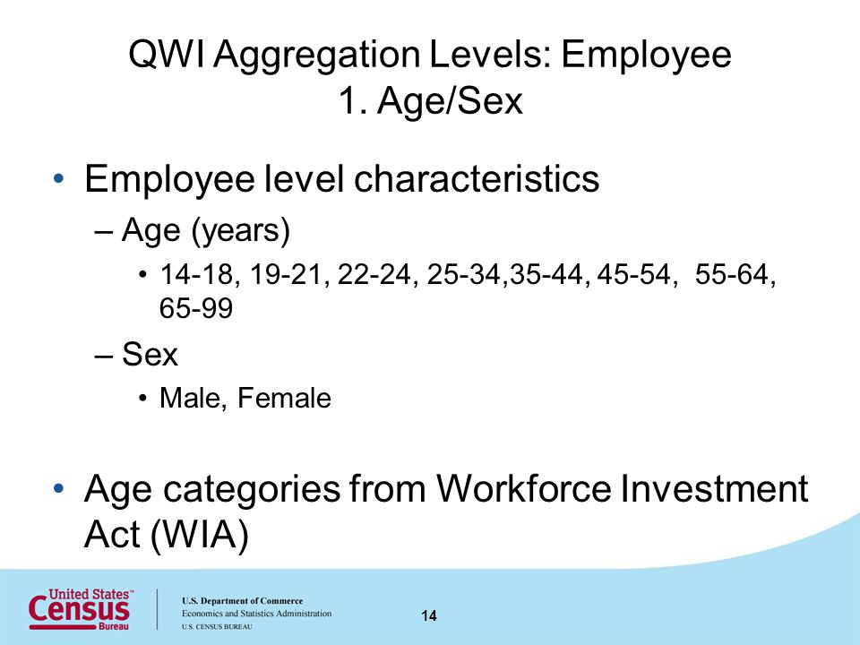 QWI Aggregation Levels: Employee 1.
