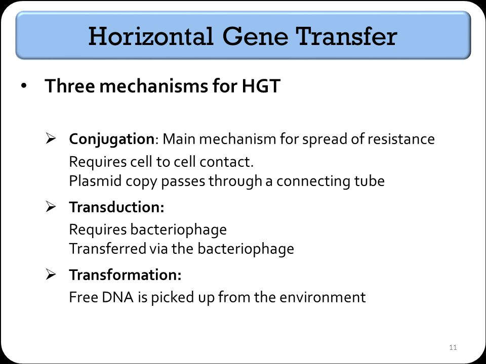 11 Horizontal Gene Transfer Three mechanisms for HGT Conjugation: Main mechanism for spread of resistance Requires cell to cell contact.