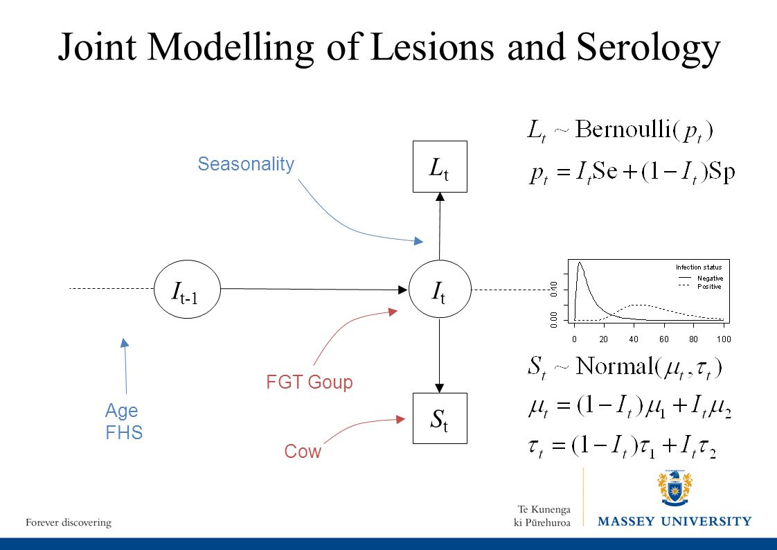 Joint Modelling of Lesions and Serology ItIt I t-1 LtLt StSt Seasonality Age FHS Cow FGT Goup