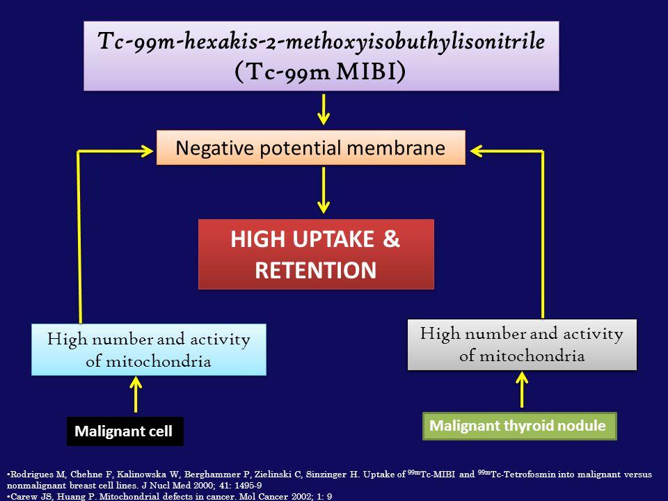 Tc-99m-hexakis-2-methoxyisobuthylisonitrile (Tc-99m MIBI) Negative potential membrane HIGH UPTAKE & RETENTION Malignant cell High number and activity