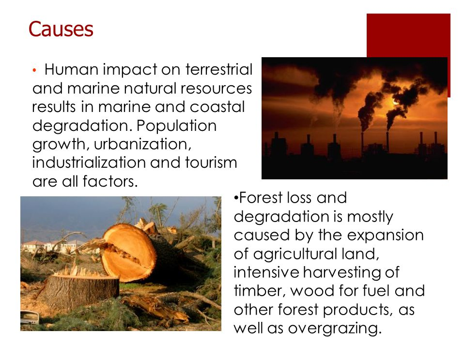 Human impact on terrestrial and marine natural resources results in marine and coastal degradation.