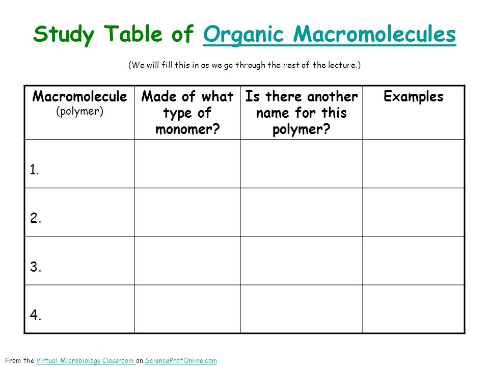 Study Table of Organic Macromolecules (We will fill this in as we go through the rest of the lecture.)Organic Macromolecules Macromolecule (polymer) M