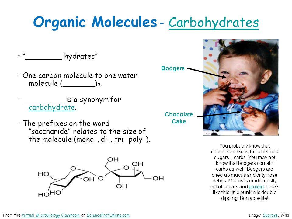 Organic Molecules - CarbohydratesCarbohydrates ________ hydrates One carbon molecule to one water molecule (_______) n. _________ is a synonym for car