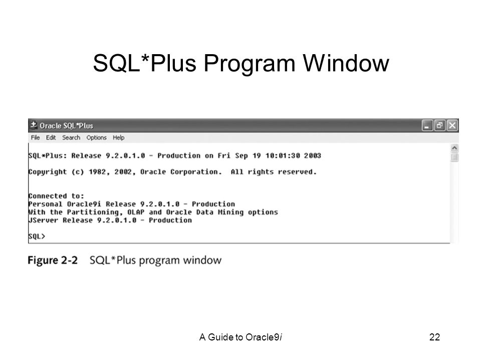A Guide to Oracle9i22 SQL*Plus Program Window