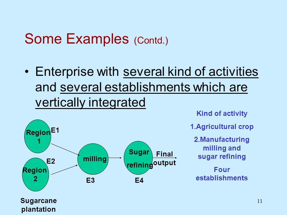 11 Some Examples (Contd.) Enterprise with several kind of activities and several establishments which are vertically integrated Region 2 Sugarcane plantation Region 1 milling Sugar refining Final output Kind of activity 1.Agricultural crop 2.Manufacturing milling and sugar refining Four establishments E1 E2 E3E4