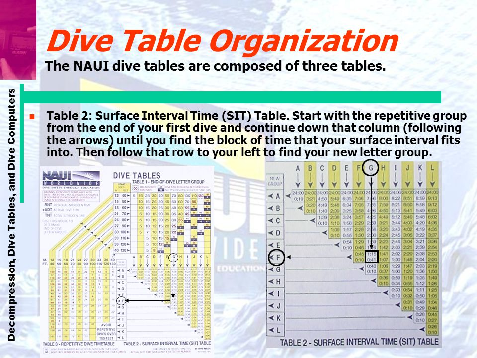 Decompression, Dive Tables, and Dive Computers Dive Table Organization The NAUI dive tables are composed of three tables. n Table 2: Surface Interval