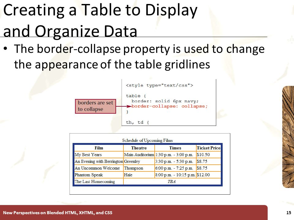 XP Creating a Table to Display and Organize Data The border-collapse property is used to change the appearance of the table gridlines New Perspectives on Blended HTML, XHTML, and CSS15