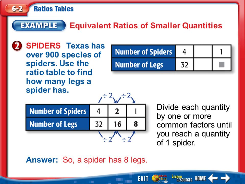 Example 2 Equivalent Ratios of Smaller Quantities SPIDERS Texas has over 900 species of spiders.