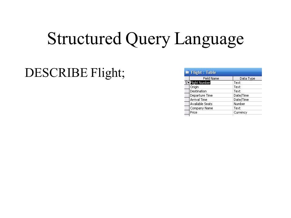 Structured Query Language DESCRIBE Flight;