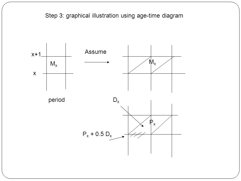 x+1 x period MxMx Assume MxMx P x + 0.5 D x PxPx DxDx Step 3: graphical illustration using age-time diagram