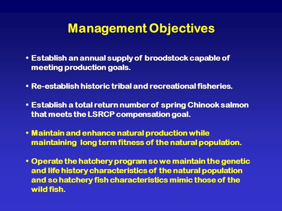 Management Objectives Establish an annual supply of broodstock capable of meeting production goals. Re-establish historic tribal and recreational fish