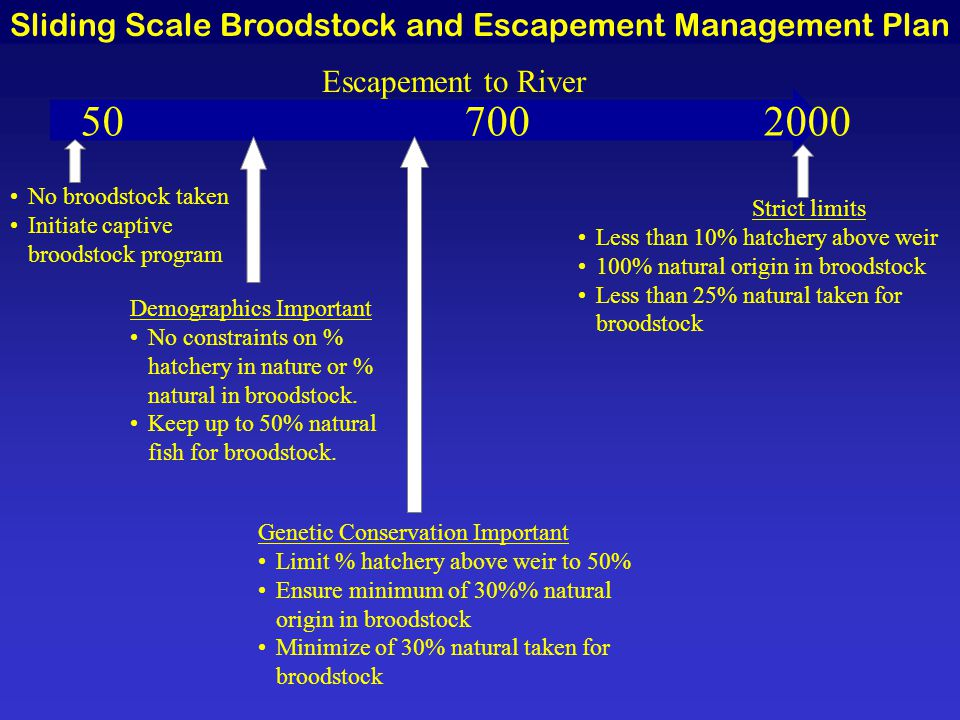 50 700 2000 No broodstock taken Initiate captive broodstock program Demographics Important No constraints on % hatchery in nature or % natural in broodstock.