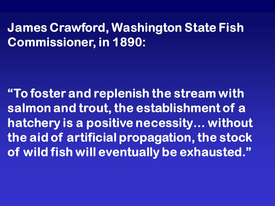 James Crawford, Washington State Fish Commissioner, in 1890: To foster and replenish the stream with salmon and trout, the establishment of a hatchery is a positive necessity… without the aid of artificial propagation, the stock of wild fish will eventually be exhausted.