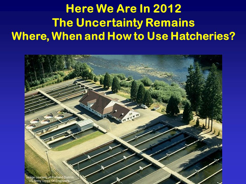 Here We Are In 2012 The Uncertainty Remains Where, When and How to Use Hatcheries?