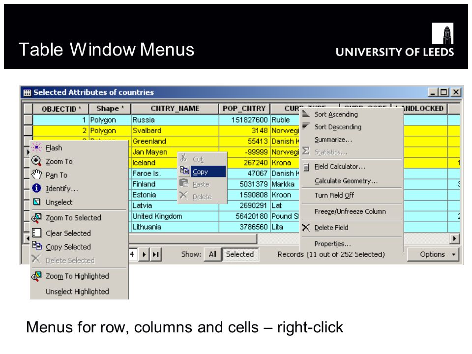 Table Window Menus Menus for row, columns and cells – right-click 6