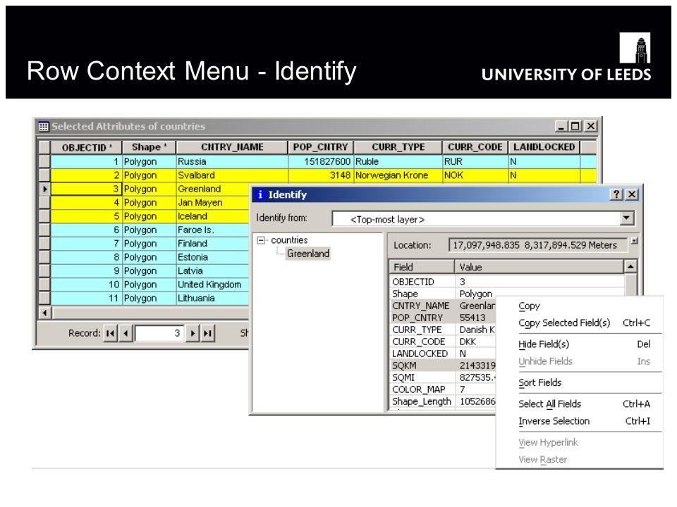 Row Context Menu - Identify 8
