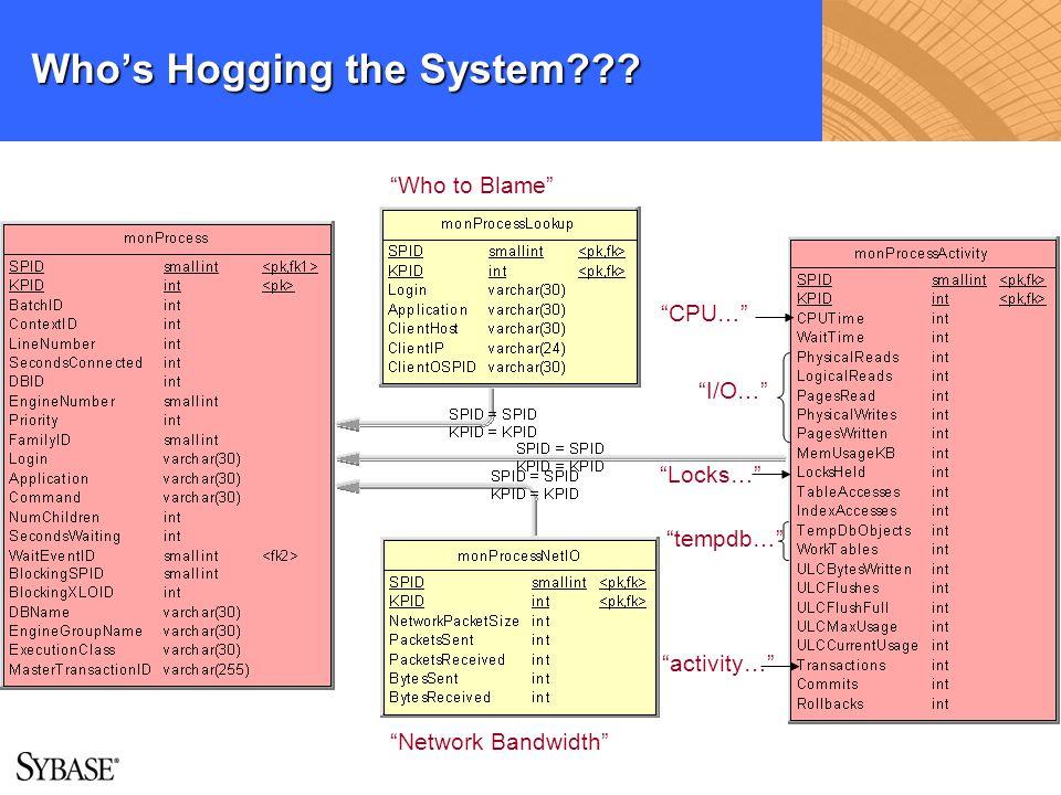 Whos Hogging the System??? Network Bandwidth Who to Blame CPU… I/O… Locks… tempdb… activity…