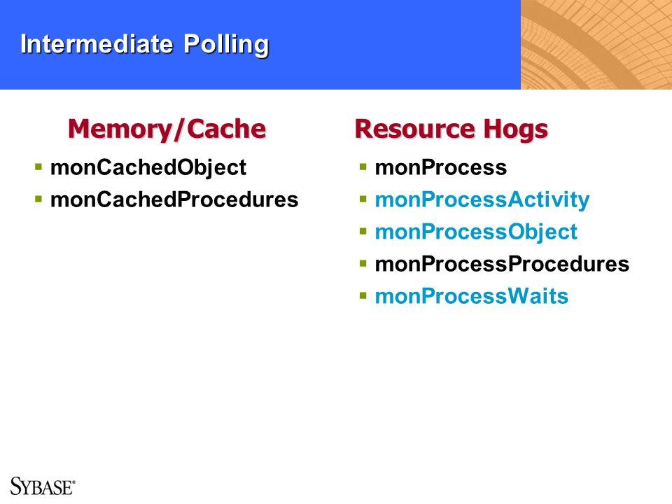 Intermediate Polling monCachedObject monCachedProcedures monProcess monProcessActivity monProcessObject monProcessProcedures monProcessWaits Memory/Ca