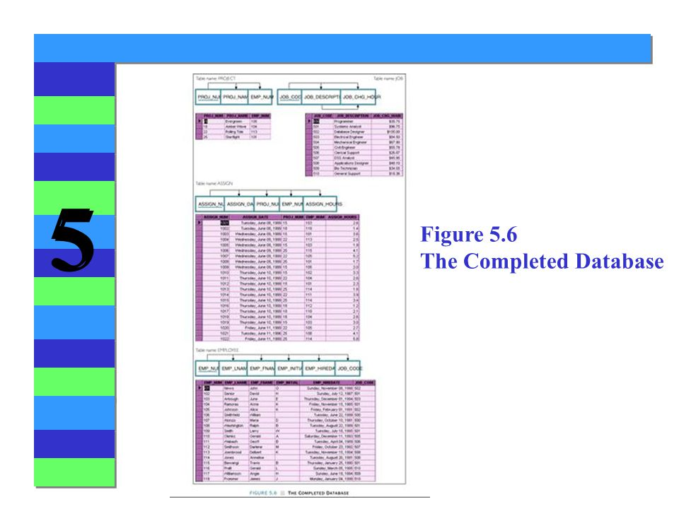 5 5 Figure 5.6 The Completed Database
