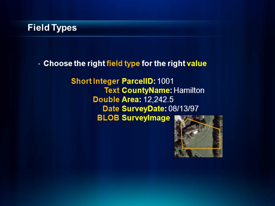 Field Types Choose the right field type for the right value ParcelID: 1001 CountyName: Hamilton Area: 12,242.5 SurveyDate: 08/13/97 SurveyImage: Short Integer Text Double Date BLOB