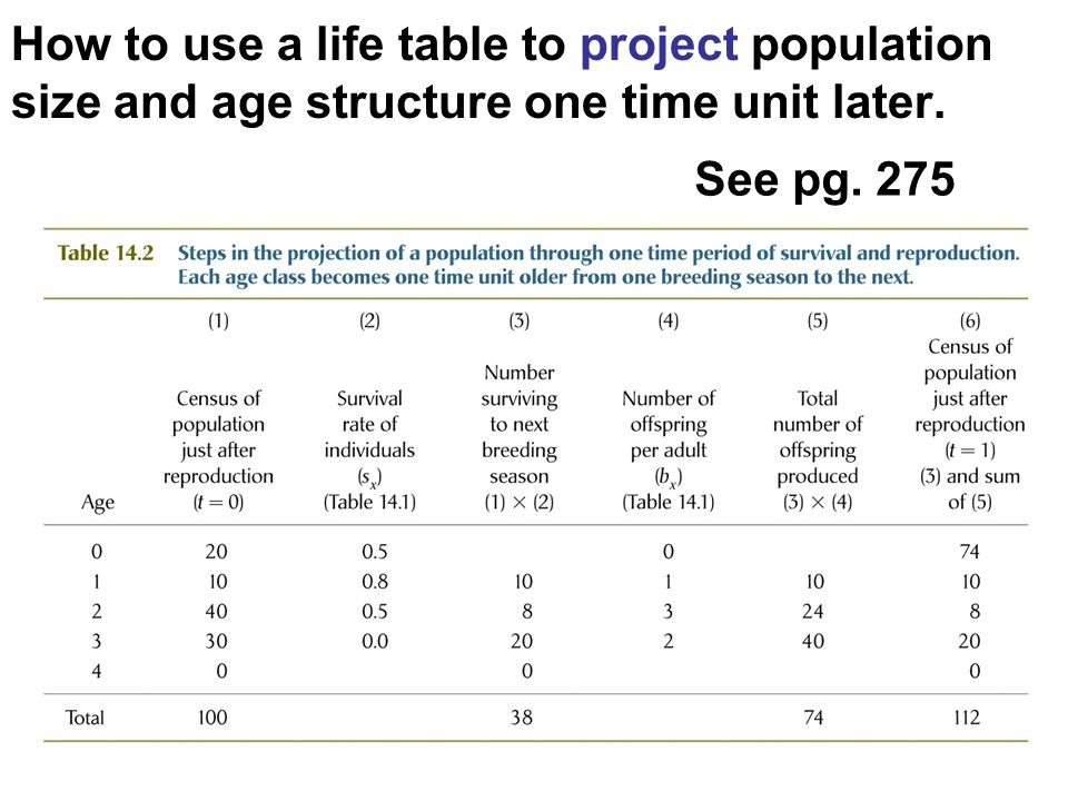 How to use a life table to project population size and age structure one time unit later. See pg. 275