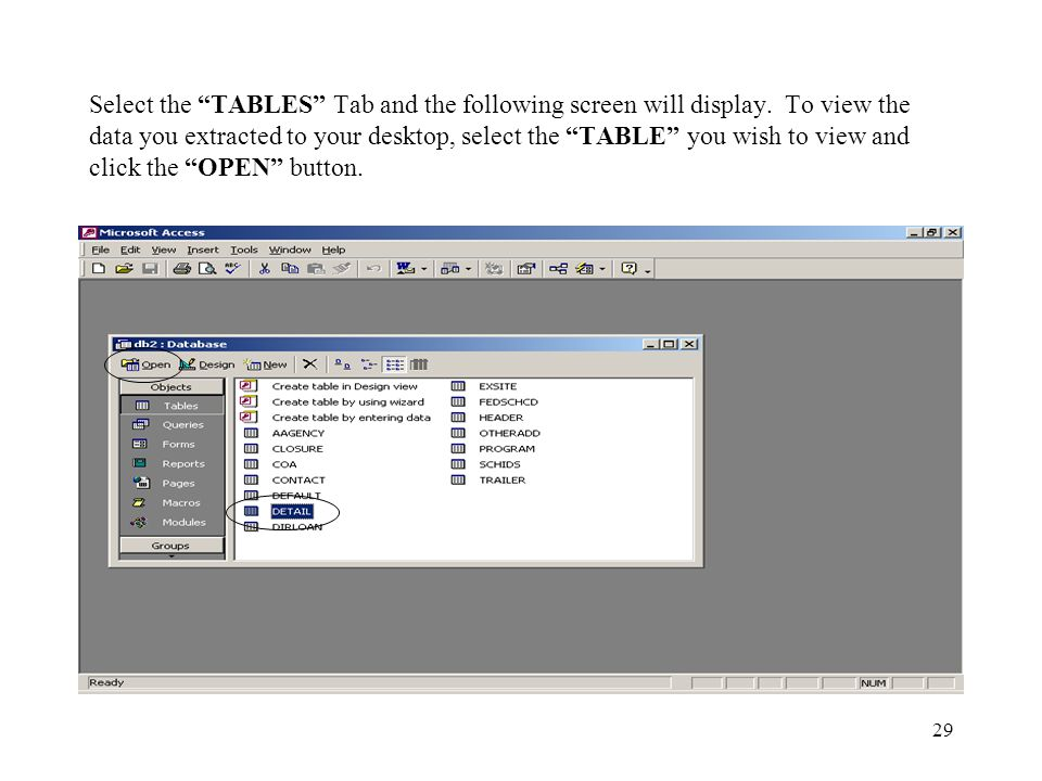29 Select the TABLES Tab and the following screen will display. To view the data you extracted to your desktop, select the TABLE you wish to view and