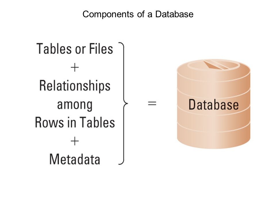 Components of Database System Database management system (DBMS): software –To create tables, relationships, and other structure –To process (read, insert, modify, or delete) data –To produce forms, reports, and queries through database application –To administer (security, back up, recover, clean up, and enhance performance) a database Structured Query Language (SQL) –An international standard language for processing a database Product types –Enterprise DBMS: IBM (DB2), Microsoft (SQL Server), Oracle Corporation (Oracle), Open-source (MySQL) –Personnel DBMS: Microsoft (Access) for 15 or less users