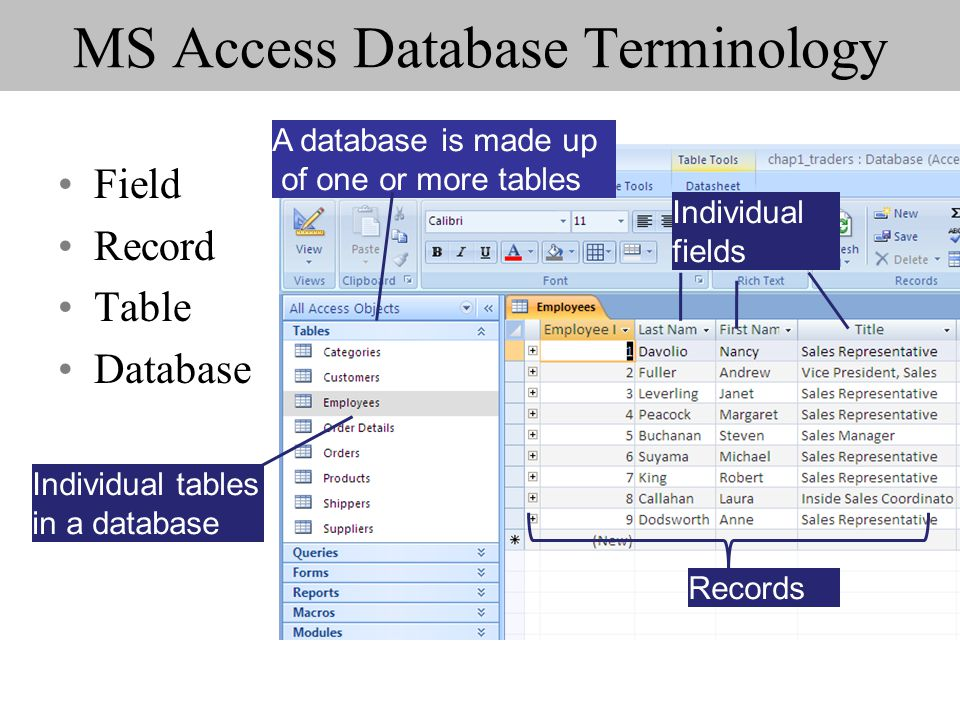 MS Access Database Terminology Field Record Table Database A database is made up of one or more tables Individual tables in a database Records Individ