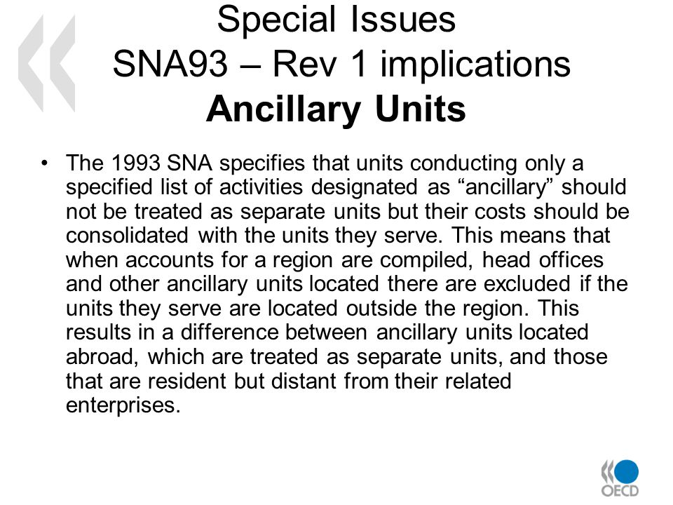 Special Issues SNA93 – Rev 1 implications Ancillary Units The 1993 SNA specifies that units conducting only a specified list of activities designated