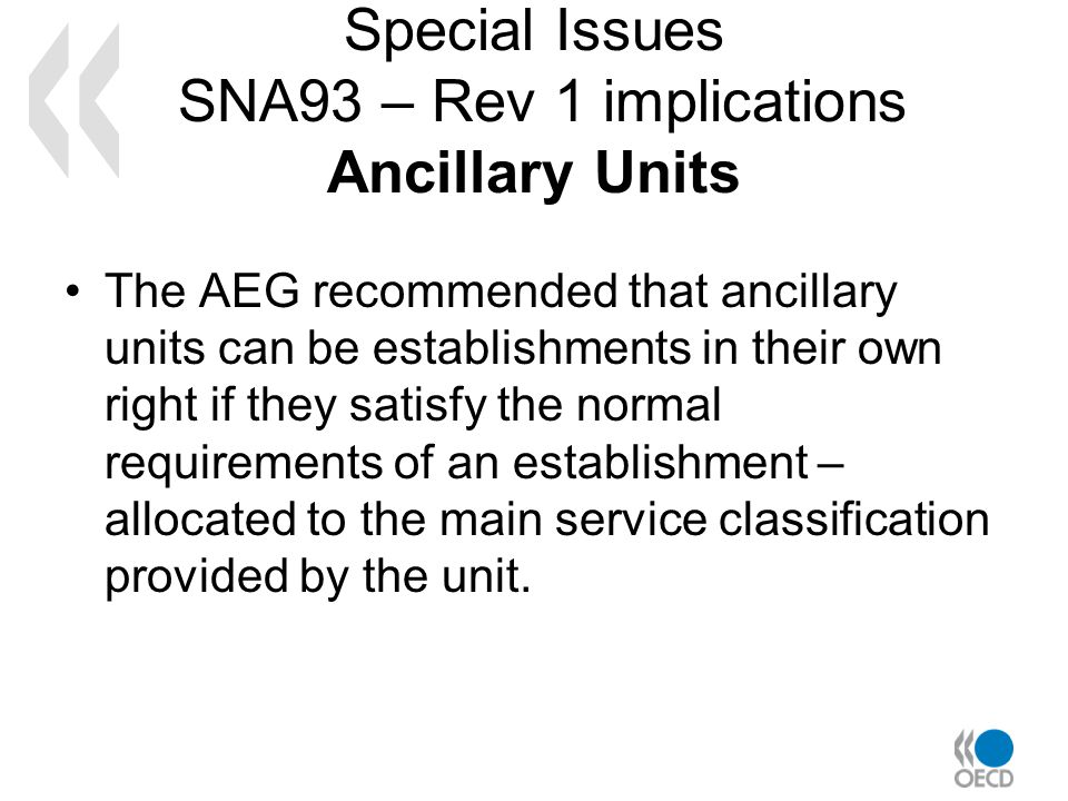 Special Issues SNA93 – Rev 1 implications Ancillary Units The AEG recommended that ancillary units can be establishments in their own right if they sa