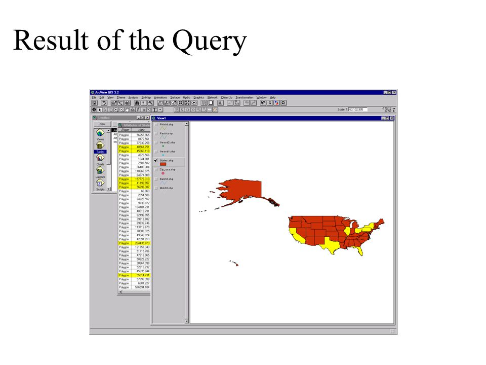 Result of the Query