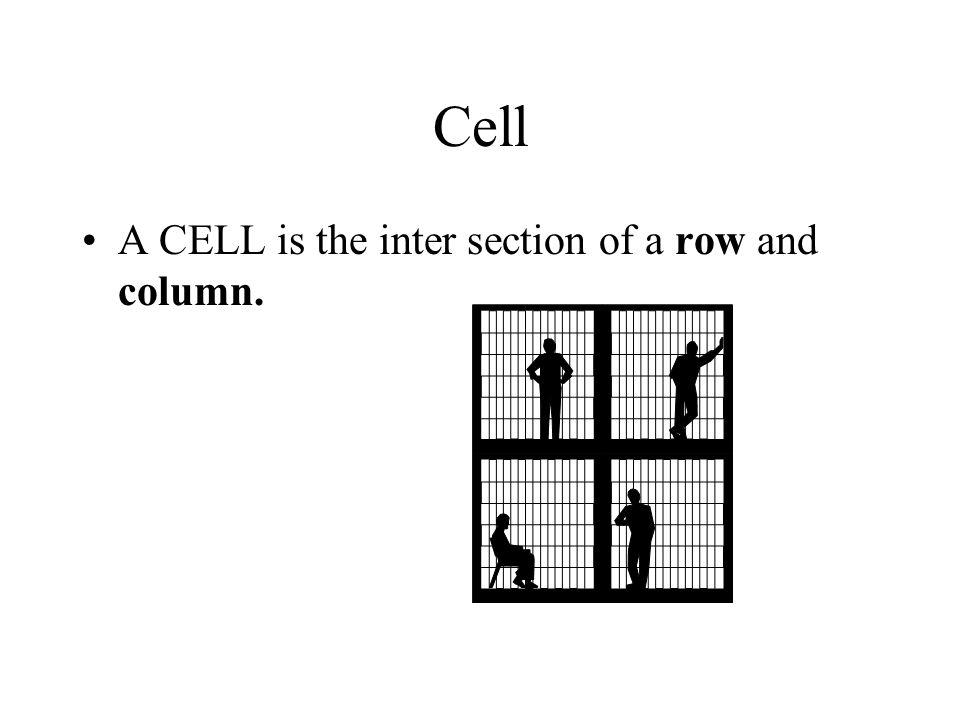 A Column A Column is a vertical line of information