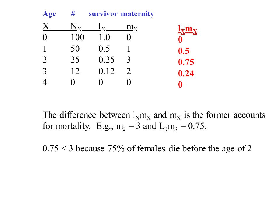 XN X l X m X 01001.00 1500.51 2250.253 3120.122 4000 Age # survivor maternity l X m X 0 0.5 0.75 0.24 0 The difference between l X m X and m X is the