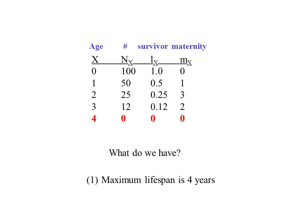 XN X l X m X 01001.00 1500.51 2250.253 3120.122 4000 What do we have? (1)Maximum lifespan is 4 years Age # survivor maternity