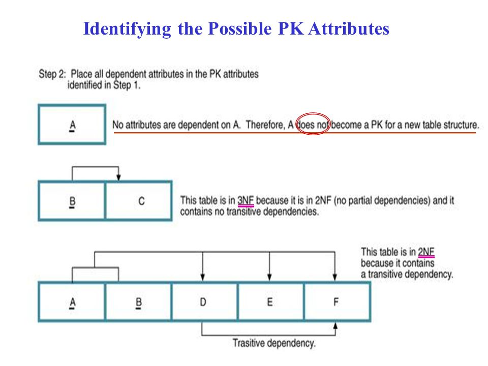 Identifying the Possible PK Attributes