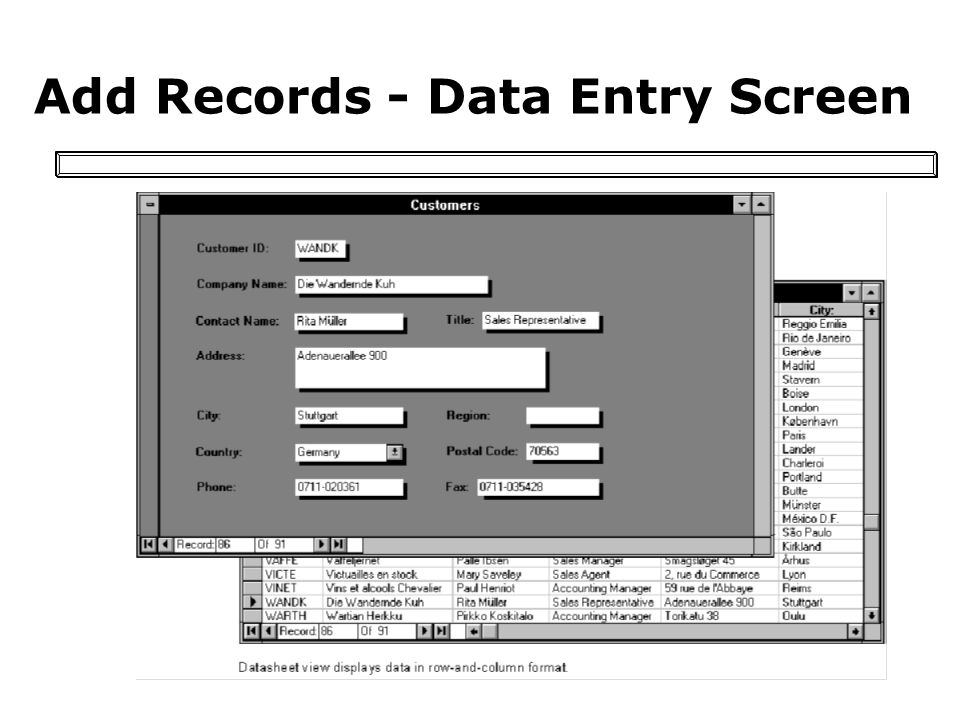Add Records - Data Entry Screen