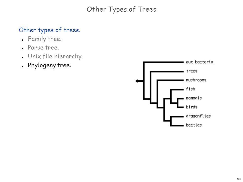 50 Other Types of Trees Other types of trees. n Family tree. n Parse tree. n Unix file hierarchy. n Phylogeny tree.