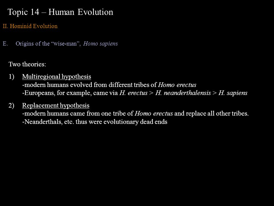 Topic 14 – Human Evolution II. Hominid Evolution E.