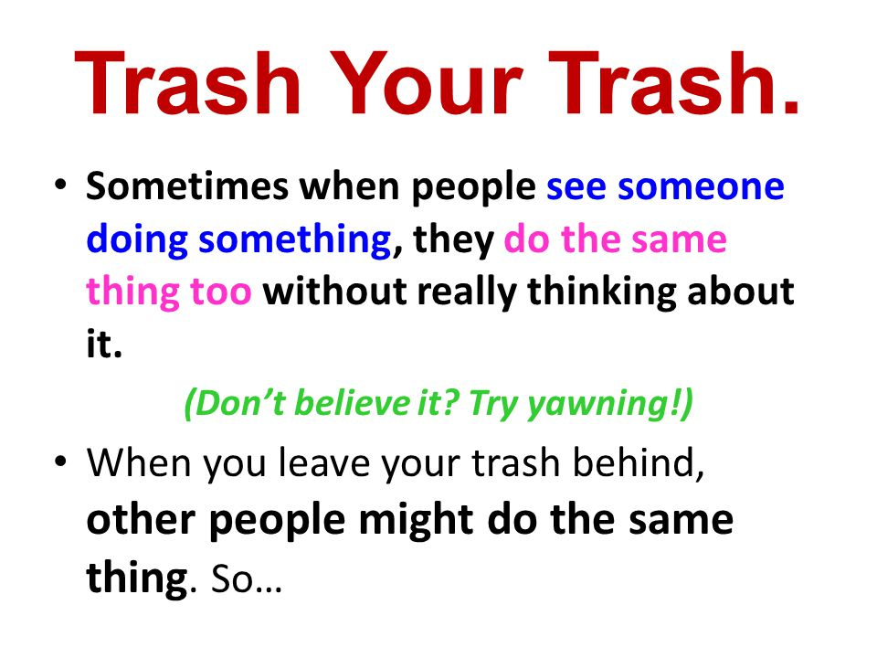 Solution # 2 Trash your trash!