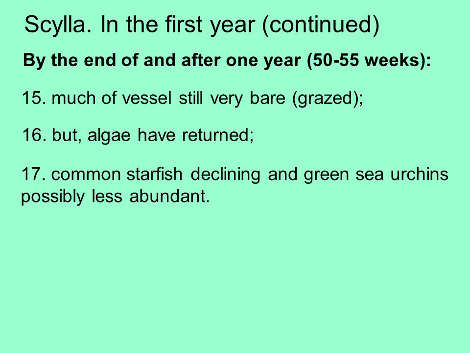 Scylla. In the first year (continued) 15.