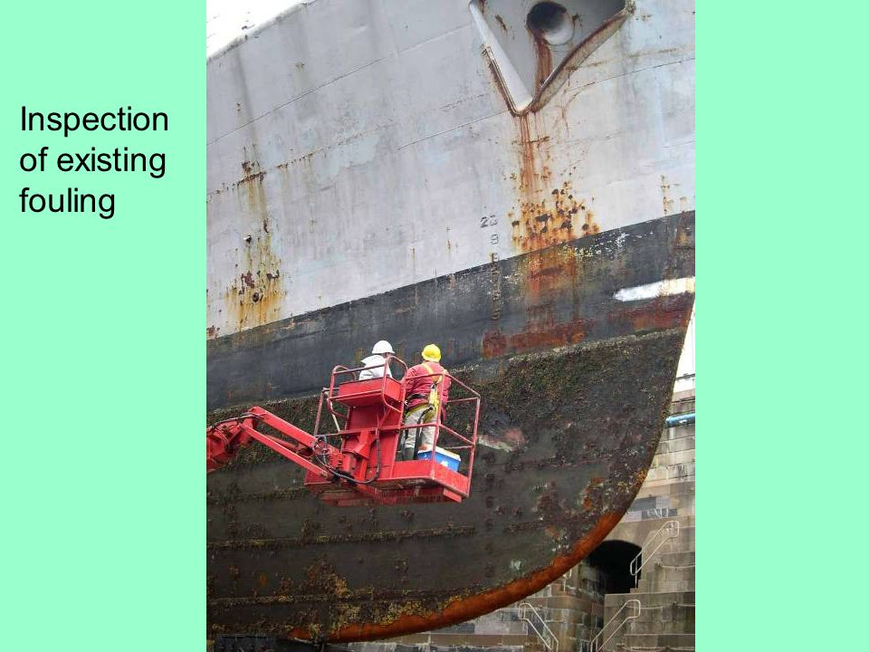 Inspection of existing fouling