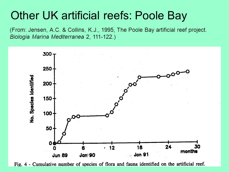 Other UK artificial reefs: Poole Bay (From: Jensen, A.C.