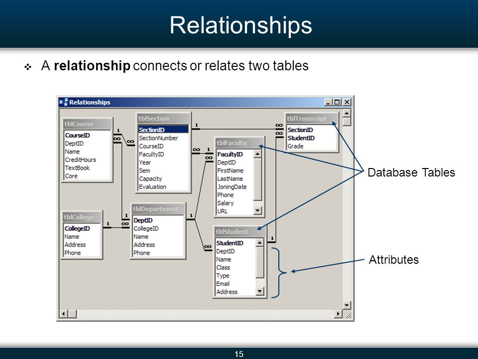 15 Relationships A relationship connects or relates two tables Database Tables Attributes