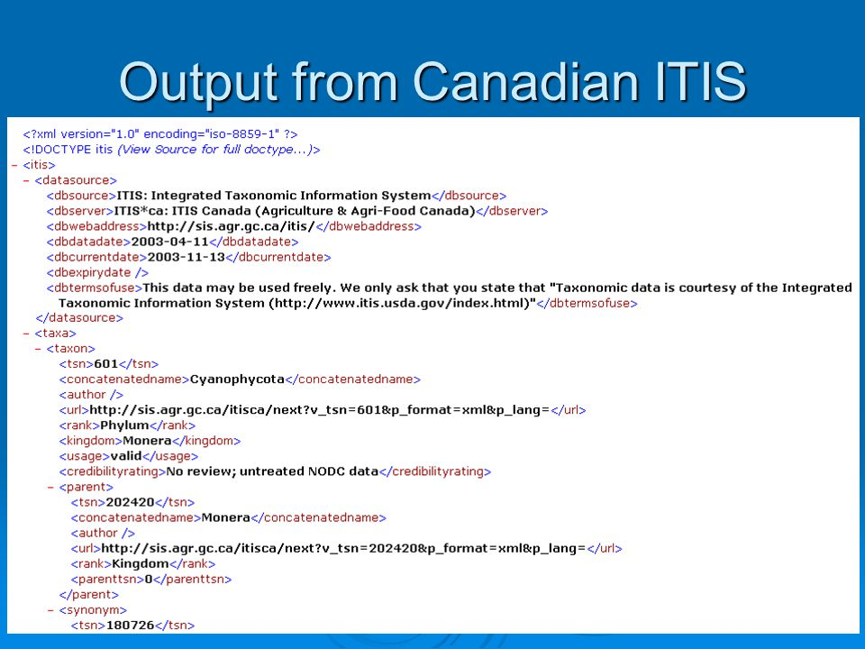 7 Output from Canadian ITIS cont